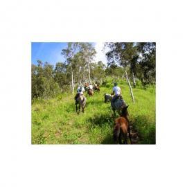 4 places randonnées équestres de 2h00 dans la vallées de la Ouenghi